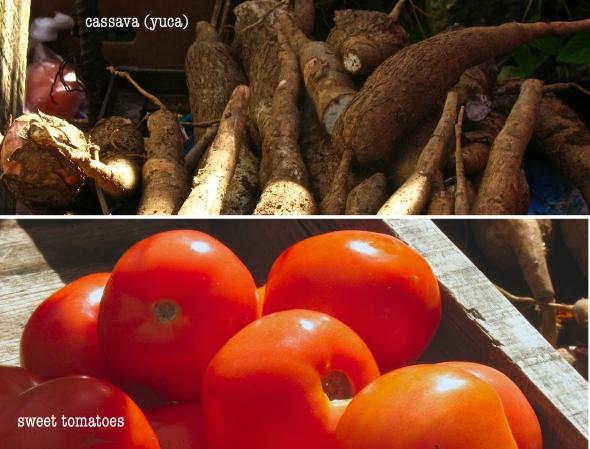 cassavatomatoes