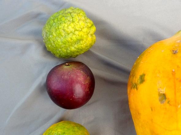 lemon and kymit