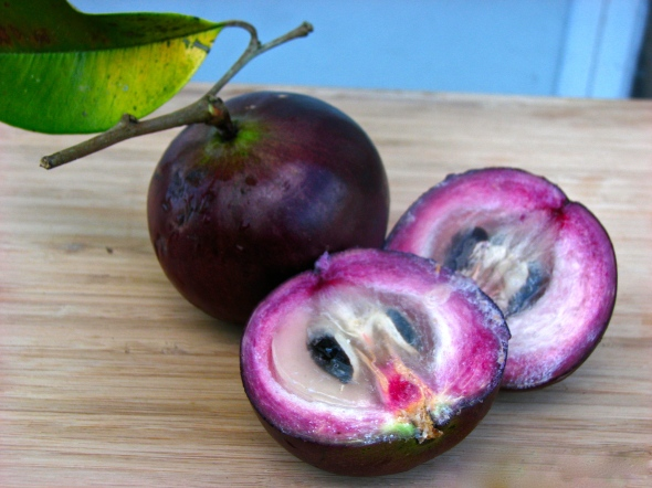 kymit fruit