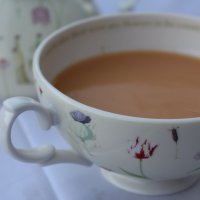 david's tea: creme caramel rooibos- a review